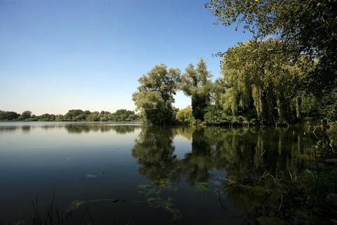 Wasnes-au-bac