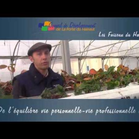 conseil_de_developpement_de_la_porte_du_hainaut_ressources_humaines